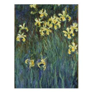 Claude Monet - Yellow Irises Postcards
