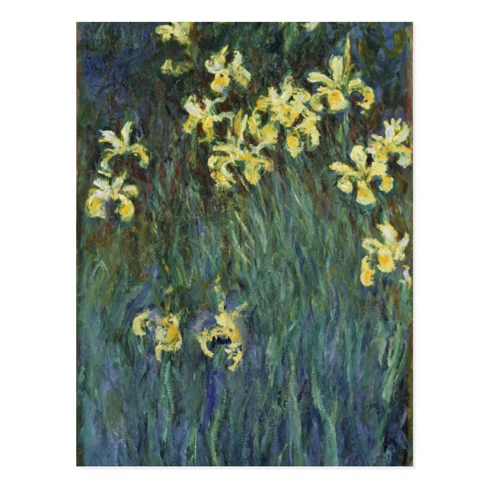 Claude Monet - Yellow Irises Postcard