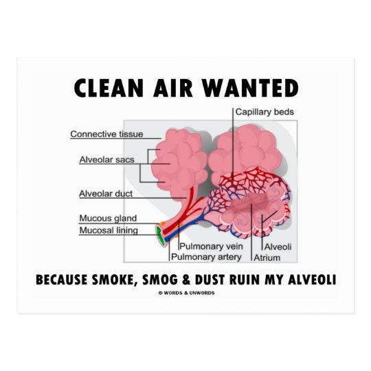 Clean Air Wanted Because Smoke Smog Dust Ruin My Postcard