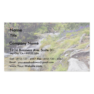 Clean Cold Stream In High Tatras In Slovakia Pack Of Standard Business Cards