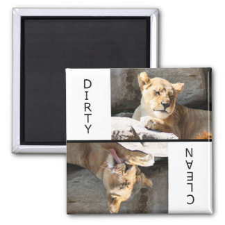 Clean Dirty Lioness Square Magnet