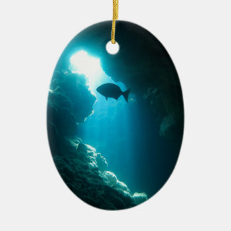 Clear blue cave and fish ceramic oval decoration