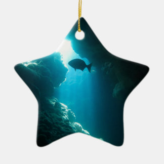 Clear blue cave and fish ceramic star decoration