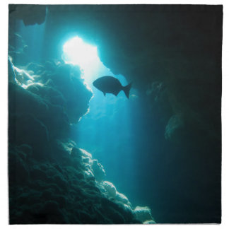 Clear blue cave and fish cloth napkins