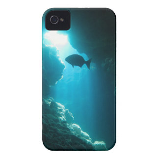 Clear blue cave and fish iPhone 4 covers