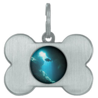 Clear blue cave and fish pet name tag