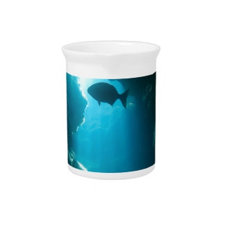 Clear blue cave and fish pitcher
