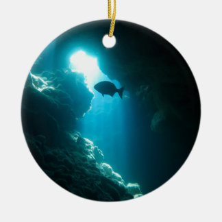 Clear blue cave and fish round ceramic decoration