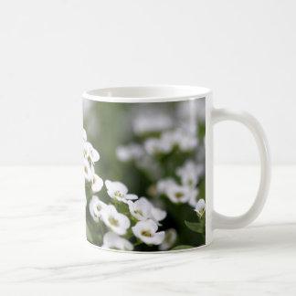 clear crystal white alyssum basic white mug