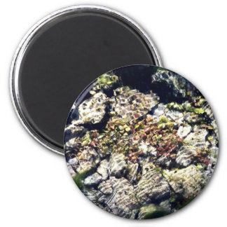 Clear Waters 6 Cm Round Magnet