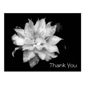 Clematis 3b Memorial Sympathy Thank You Postcard