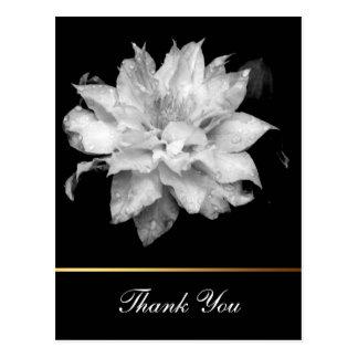 Clematis 3c Floral B&W Photo Sympathy Thank You Postcard