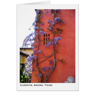 Clematis, Ascona, Ticino Card