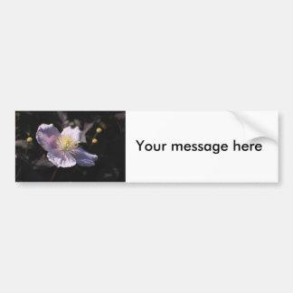 Clematis Bumper Sticker