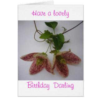 Clematis cirrhosa flower card