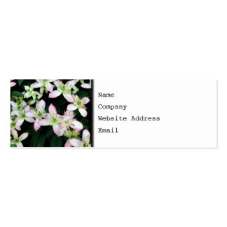 clematis,flowers,pink,garden+flowers,flower,pretty pack of skinny business cards