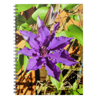 CLEMATIS NOTEBOOKS