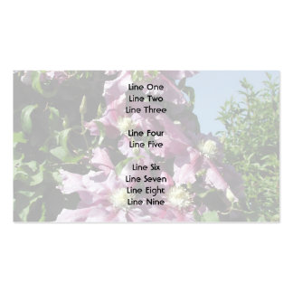 Clematis. Pink Flowers, and blue sky. Business Card Template