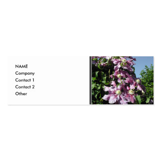 Clematis. Pink Flowers, and blue sky. Pack Of Skinny Business Cards