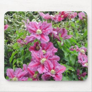 Clematis Pinky Purple Flowers Feminine Mouse Pad