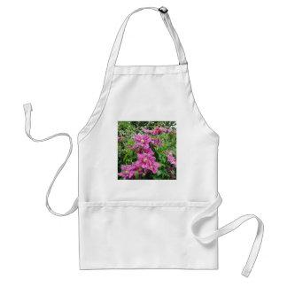 Clematis. Pinky Purple Flowers. Feminine. Standard Apron
