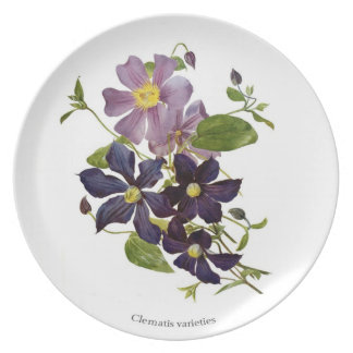 Clematis Plate