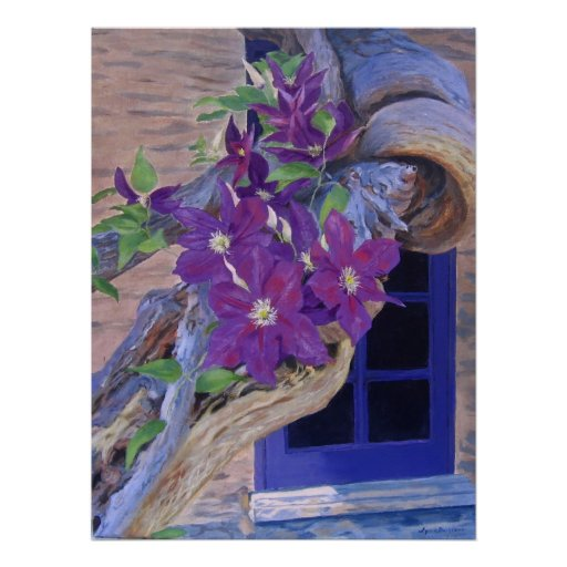 clematis poster/print poster