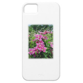 Clematis. Pretty Pink - Purple Flowers. iPhone 5 Covers