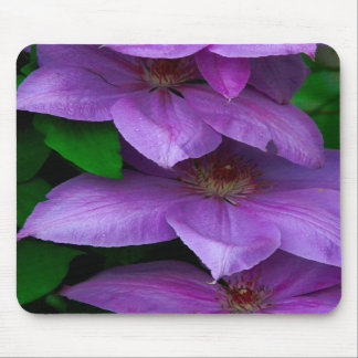 clematis vine mousepads