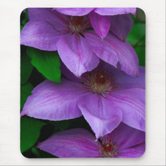 clematis vine mouse pad