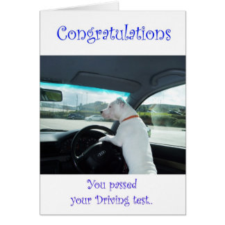 Cleo Passed Driving Test Greeting Card