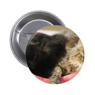 Cleo & Shiva 6 Cm Round Badge