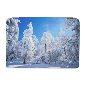 Cleveland National Forest iPad Mini Cover