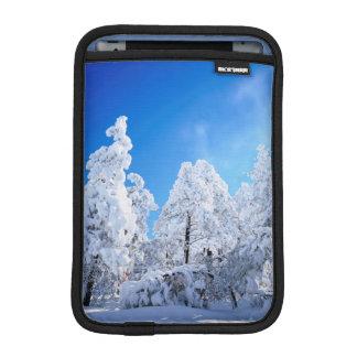 Cleveland National Forest iPad Mini Sleeve