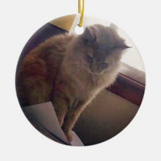Clever Cat Christmas Ornament