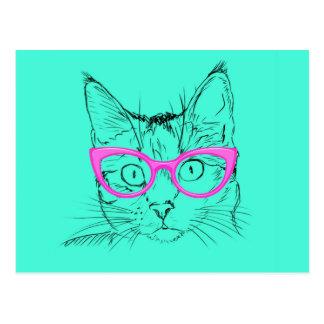 Clever Cat Postcard