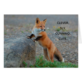 Clever Sly Cunning Cute Fox Greeting Card