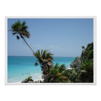 Cliff Palm Poster