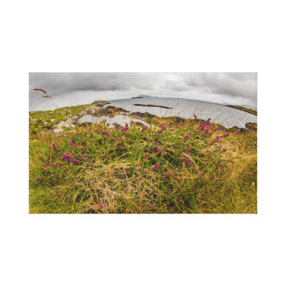 """Cliff top flower, Ireland"" wall art"