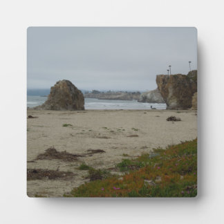 Cliffs Along Pismo Beach Shoreline Plaque