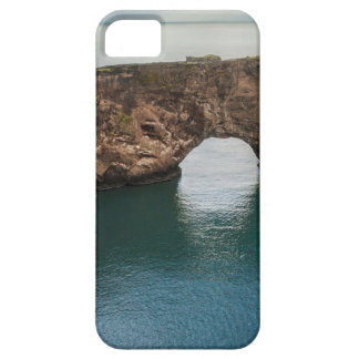 Cliffs and Ocean iPhone 5 Case