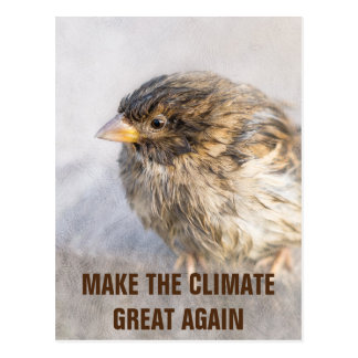 Climate change awareness postcard