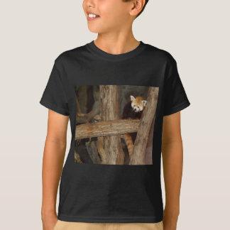 Climbing Panda Kids Tshirt
