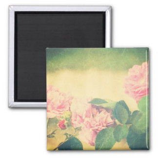 Climbing Pink Roses Square Magnet