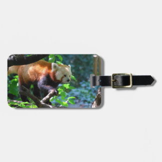 Climbing Red Panda Luggage Tag