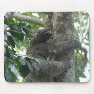 Climbing Sloth Mouse Pad