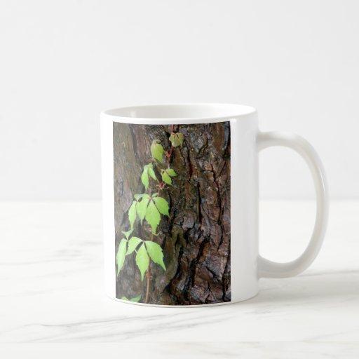 Climbing Vine Mug