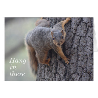 Clinging Squirrel Card
