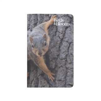 Clinging Squirrel Journal