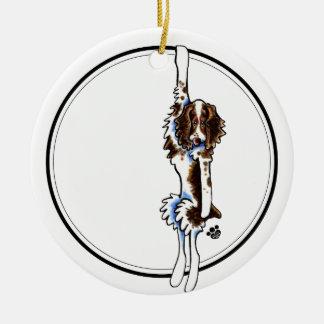 Clingy Springer Spaniel Ornament